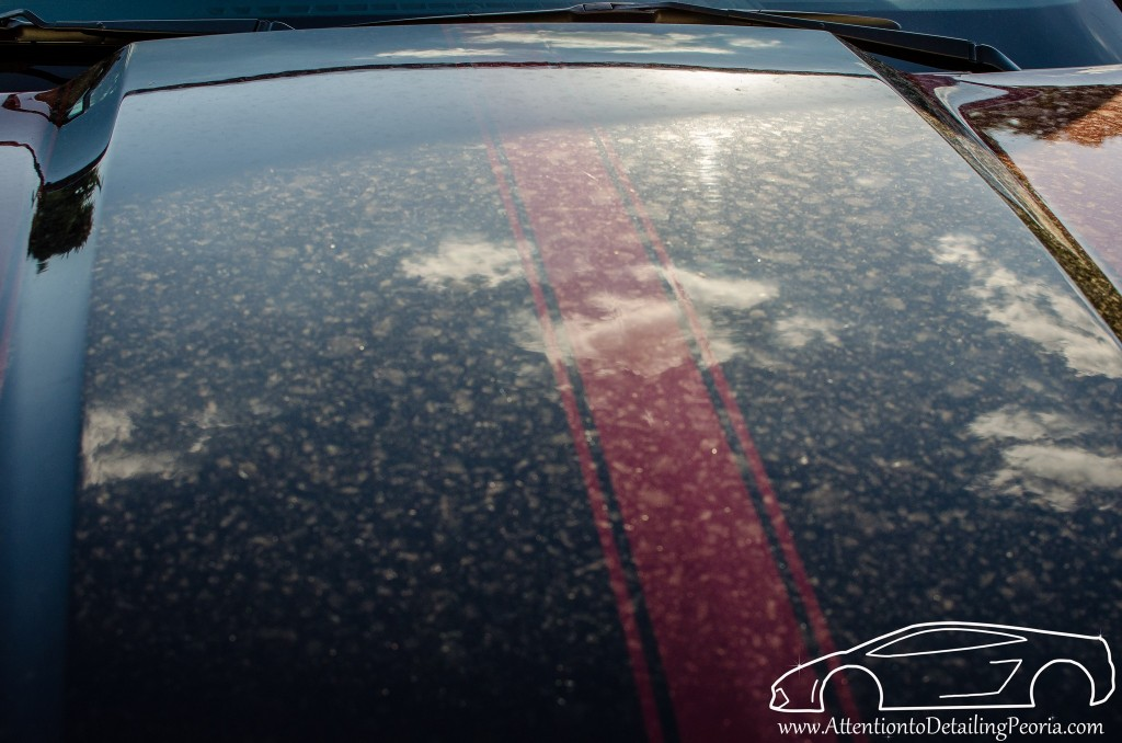 How To Prevent Water Spots On Car Paint