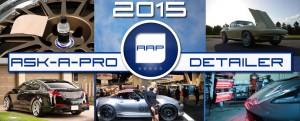 2015 AAP Ask-a-Pro Detailer Recap