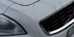 Product Review: CarPro Tar X Tar & Adhesive Remover Thumbnail