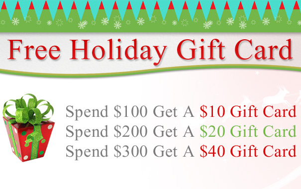 Free Holiday Gift Card