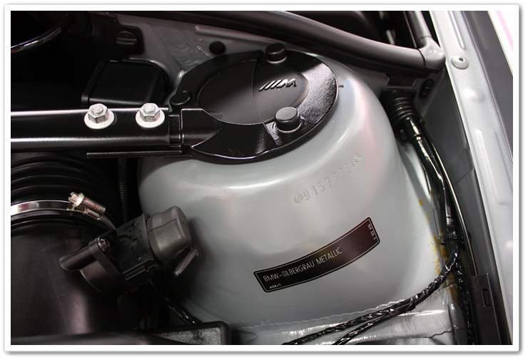2005 BMW M3 engine bay detailed by Esoteric Auto Detail