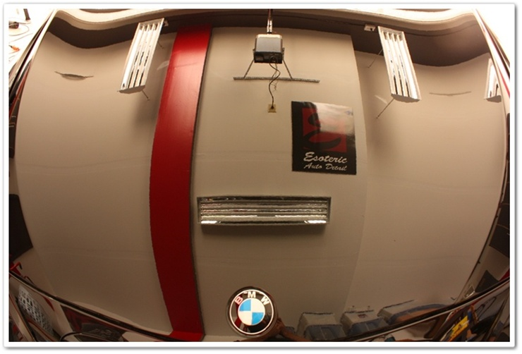 2008 BMW M6 black sapphire reflection after detail
