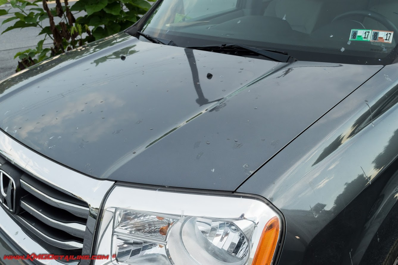 How Do I Remove Tree Sap From My Car Ask A Pro Blog