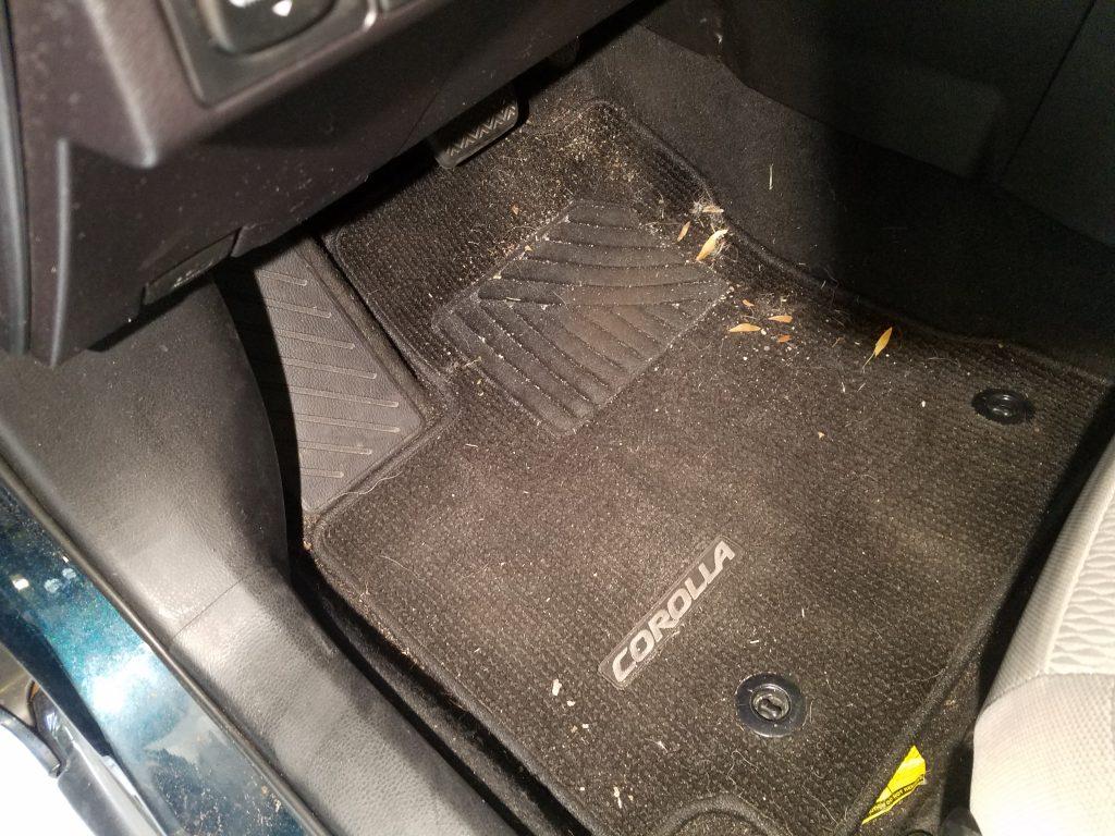 Dirty-Toyota-Carpet