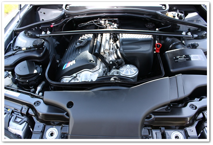 2005 BMW M3 engine bay after being detailed by Esoteric Auto Detail