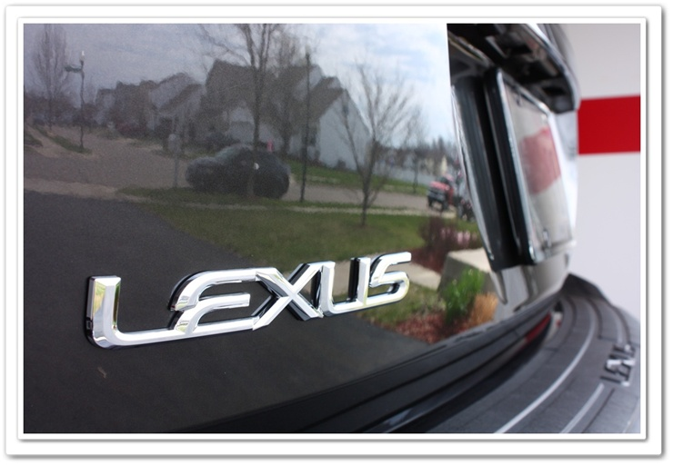 Lexus emblem after detailing