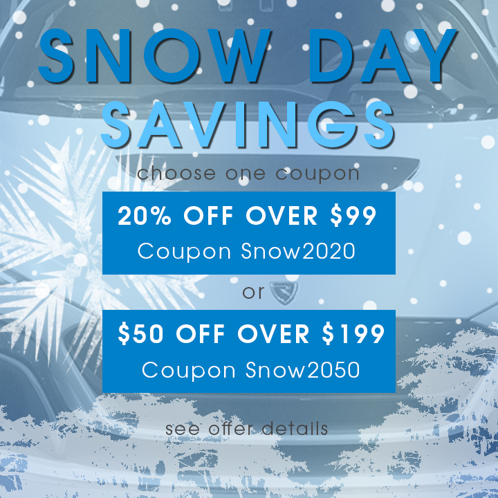 Snow Day Savings - Choose One Coupon - 20% Off Over $99 Coupon Snow2020 - $50 Off Over $199 Coupon Snow2050 - see offer details