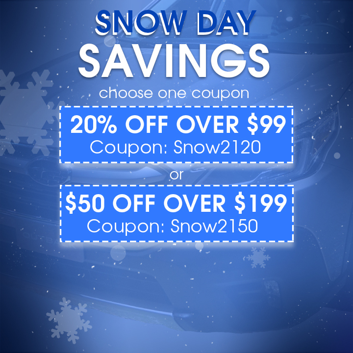Snow Day Savings - Choose One Coupon - 20% Off Over $99 Coupon Snow2120 or $50 Off Over $199 Coupon Snow2150