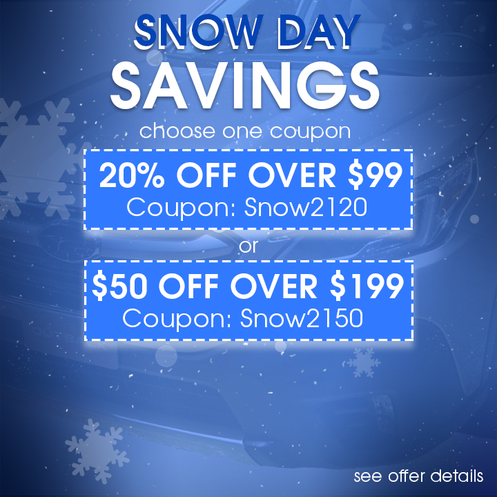Snow Day Savings - Choose One Coupon - 20% Off Over $99 Coupon Snow2120 or $50 Off Over $199 Coupon Snow2150 - see offer details